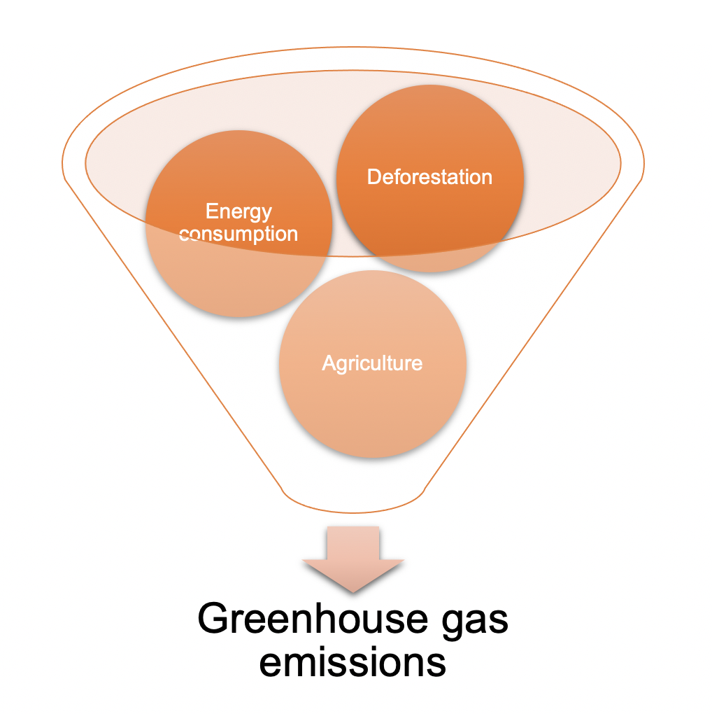 Greenhouse gas emission from deforestation, energy consumption and agriculture